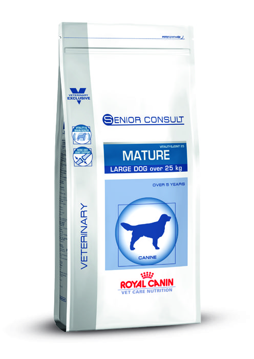 VCN SC MATURE LARGE DOG