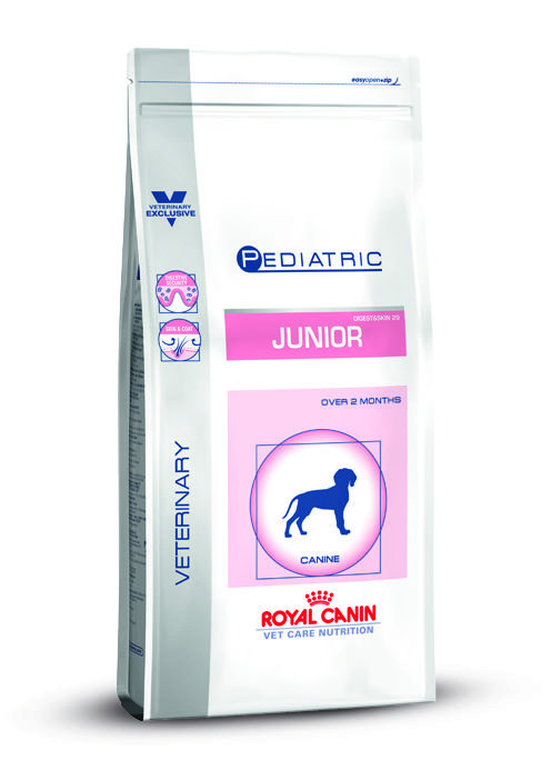 VCN JUNIOR DOG