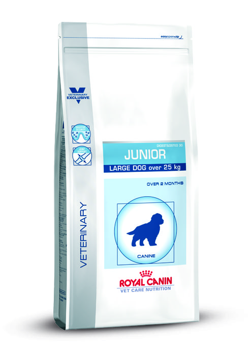 VCN JUNIOR LARGE DOG