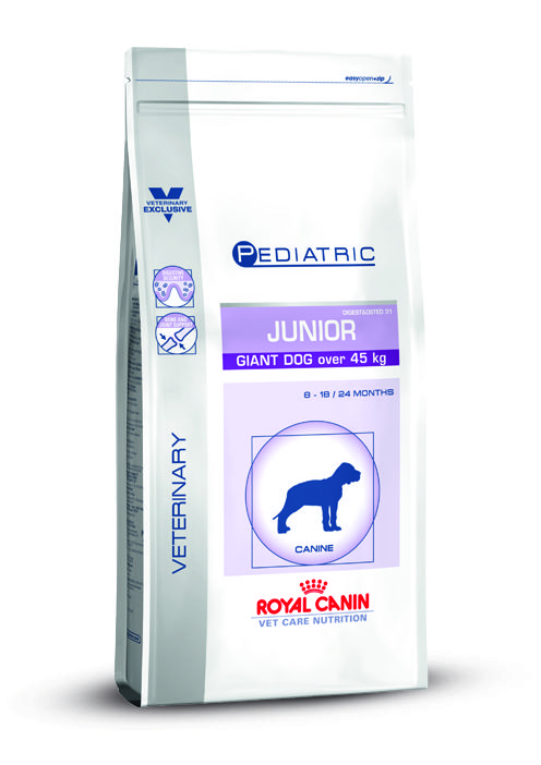 VCN JUNIOR GIANT DOG